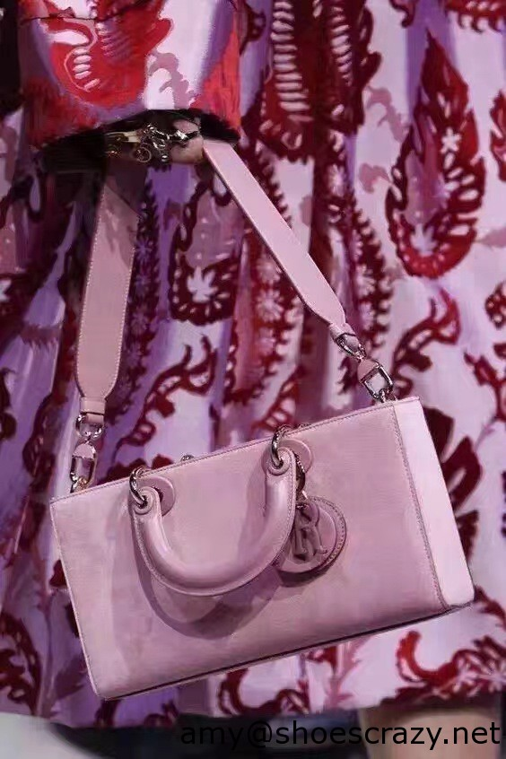 IMG 1081 - Dior Suede Leather Runway Fashion Show Bag 2016