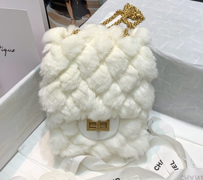 IMG 201015a 114 cr 700x623 - Chanel Shearling Lambskin Reissue Mini 2.55 Bag AS1961 2020