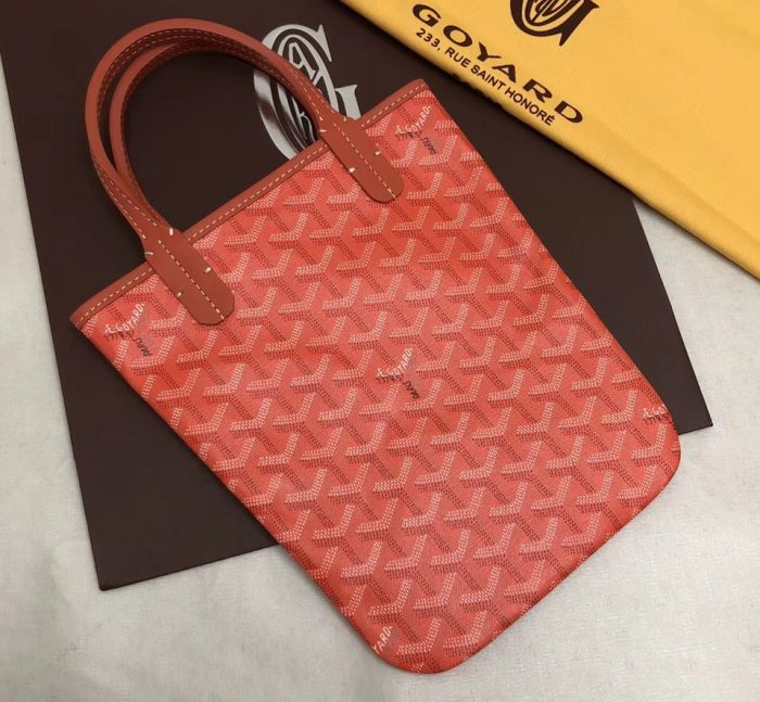 IMG 3338 cr 2 700x647 - Goyard Limited Edition Poitiers Tote Bag
