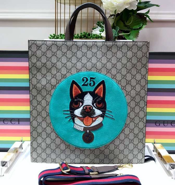 IMG 9480 cr 2 - Gucci Boston Terriers Bosco Collection 2018