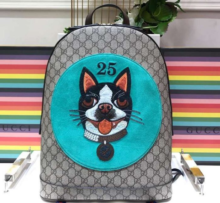 IMG 9500 cr 1 700x645 - Gucci Boston Terriers Bosco Collection 2018