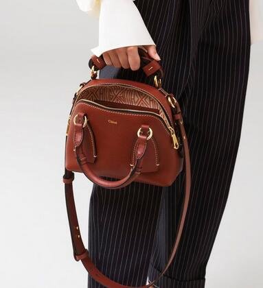 QQ截图20200909161805 - Chloe Small Daria Bag in Grained and Shiny Calfskin